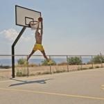 basketball-1470525_640s